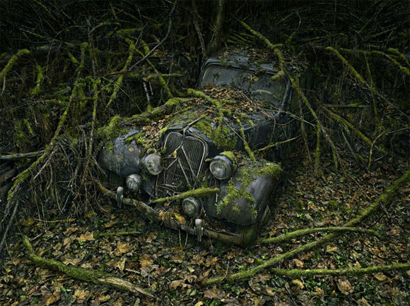 An old car overtaken by nature. Photography by Peter Lippmann